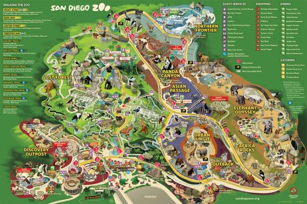 Зоопарк Сан-Диего, Калифорния
